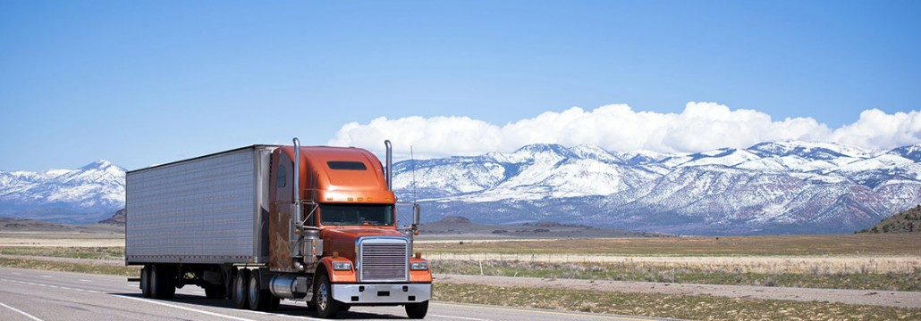 Commercial truck driver after DOT exams with snow capped mountains