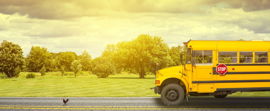 DOT Medical Exam for School Bus Drivers